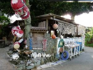 民宿「たいらファミリー」。フクギの古木が取り巻く由緒ある屋敷。八重子さんの作品でいっぱい