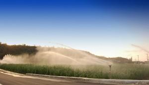 地下ダム整備は宮古の農業を劇的に変えた