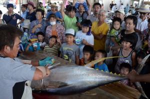 大物キハダマグロ35㌔の解体ショーは訪れた人たちの目を釘付けにした=17日、伊良部漁協