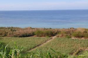1900年前まで人が住んでいたアラフ遺跡のある新城海岸